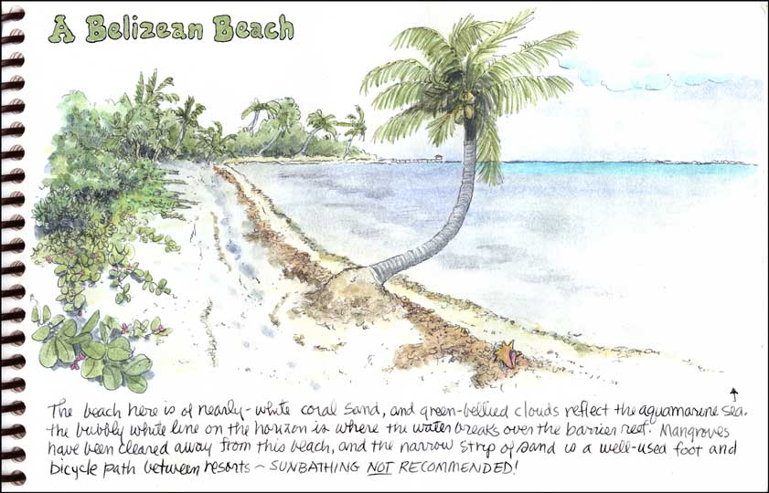 On a Belizean Beach...