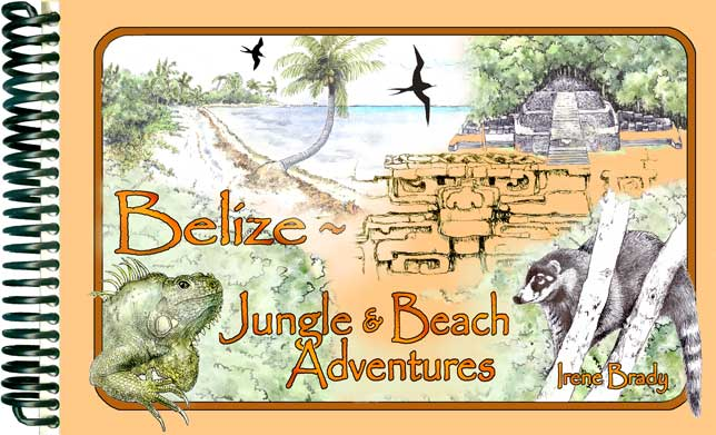 Belize ~ Beach & Jungle Adventures Cover...