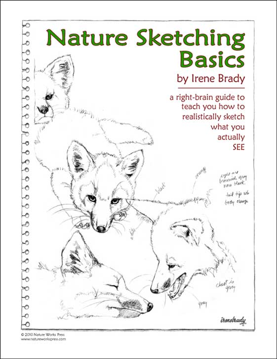 Nature Sketching Basics Cover...