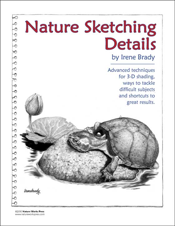 Nature Sketching Details Cover...