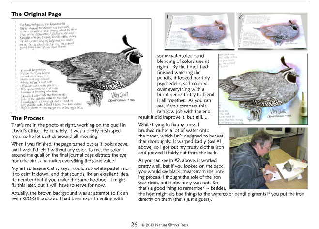 Creating the quail page...
